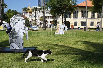 SINGAPUR-KULTUR-CAT ILLUSTRATIONS