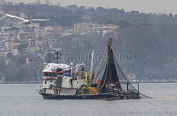 TÜRKEI-ISTANBUL-FISHERMEN