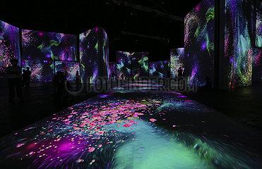 AUSTRALIEN-SYDNEY-Impressionist-Kunstausstellung