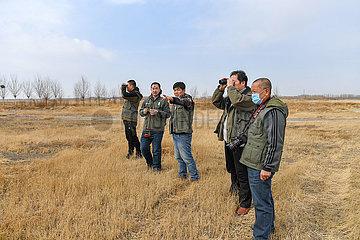 CHINA-JILIN-ZHENLAI-BIRD GUARDING TEAM (CN)