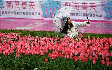 CHINA-SHAANXI-XI'AN-SPRING Blumenschau (CN)