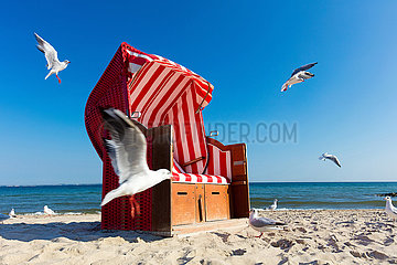 Einsammer Strandkorb am Badestrand.