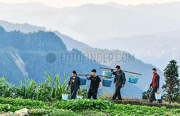 Xinhua Schlagzeilen: Wie China fast 800 Millionen Menschen aus der Armut befreit hat
