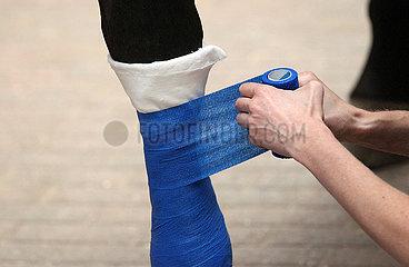 Muenchehofe  Roehrbeinverband wird bei einer Verletzung angelegt