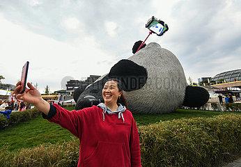 CHINA-SICHUAN-dujiangyan-INSTALLATION ART- 'selfie PANDA' (CN)