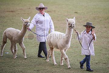 AUSTRALIA-SYDNEY-ROYAL EASTER SHOW