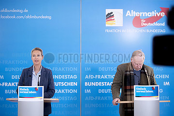Alice Weidel  Alexander Gauland  AfD-Fraktion