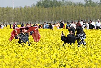 CHINA-HEBEI-Gu'an-FLOWERS (CN)