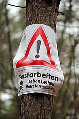 Zehdenick  Deutschland  Hinweis im Wald: Forstarbeiten Lebensgefahr Betreten verboten