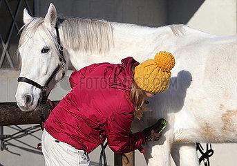Bruchmuehle  Frau mit Pudelmuetze putzt ihr Pferd im Winter im Freien