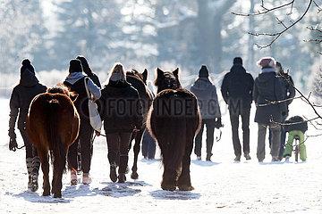 Bruchmuehle  Frauen machen mit ihren Pferden im Winter einen Spaziergang in der Natur