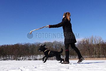 Berlin  Deutschland  Frau spielt im Winter bei Schnee mit ihrem Hund
