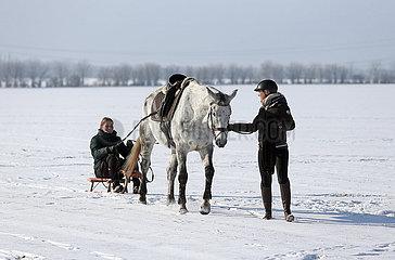 Bruchmuehle  junge Frau laesst sich auf einem Schlitten sitzend von einem gesattelten Pferd ziehen
