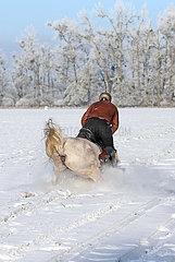 Altlandsberg  Pferd und Reiter stuerzen bei einem Ausritt auf schneebedecktem Boden
