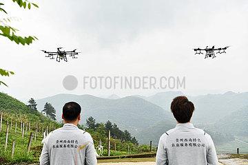 CHINA-GUIZHOU-GUIYANG-phytosanitäre DRONES (CN)
