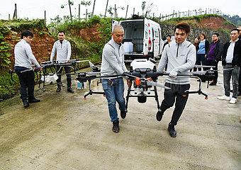 CHINA-GUIZHOU-GUIYANG-phytosanitäre DRONES (CN) CHINA-GUIZHOU-GUIYANG-phytosanitäre DRONES (CN)