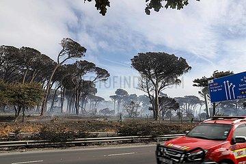 SÜDAFRIKA-CAPE TOWN-TAFELBERG-FIRE