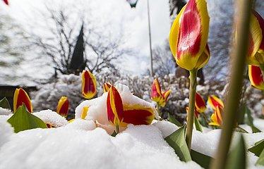 KANADA-TORONTO-SNOW