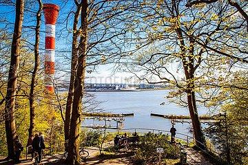 Containerschiff Elly Maersk auf der Elbe