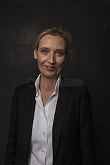 Alice Weidel AfD co-lead candidate