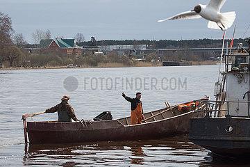 RUSSLAND-Ladogasee-FISCHEN