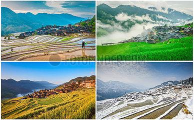 (FOCUS) CHINA-GUIZHOU-Congjiang-REIHEN FIELDS-PHOTOGRAPH (CN)