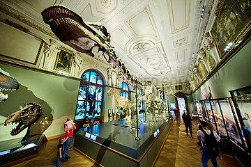 ÖSTERREICH-WIEN-Museum für Naturgeschichte-WIEDERERöFFNUNG