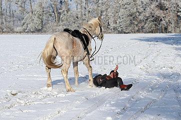 Altlandsberg  Reiter ist bei einem Ausritt auf schneebedecktem Boden von seinem Pferd gestuerzt