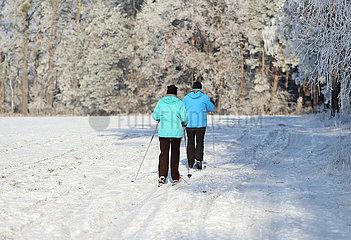 Altlandsberg  Deutschland  Mann und Frau laufen am Waldesrand auf Langlaufski durch die Natur