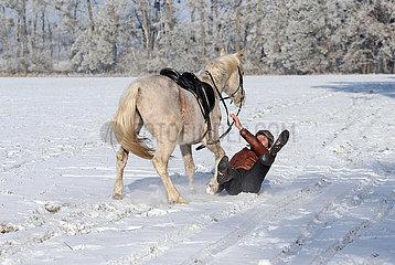Altlandsberg  Reiter stuerzt bei einem Ausritt auf schneebedecktem Boden von seinem Pferd