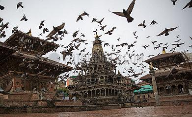 NEPAL-Lalitpur-COVID-19