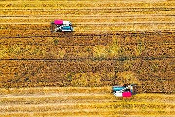 # CHINA-Landwirtschaft-Xiaoman Begrünung (CN)