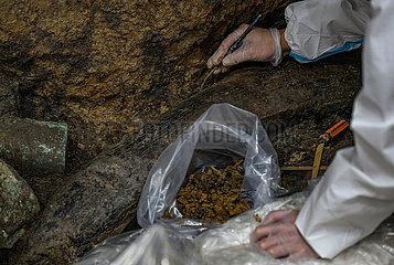 CHINA-SICHUAN-Sanxingdui-RELICS-ARCHEOLOGY (CN)