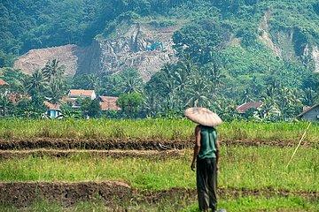 INDONESIEN-WEST JAVA-INTERNATIONALER TAG DER UMWELT