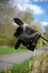 Deutschland  Bremen - verloren gegangener Lederhandschuh an einem Ast aufgespiesst