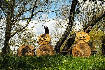 Deutschland  Bremen - Schnitzwerk im Garten eines Bauernhofs  das Hasen darstellt