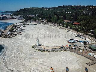 TÜRKEI-ISTANBUL- 'SEA SNOT' -Expansion