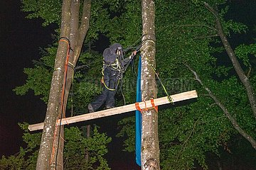 Waldbesetzung im Forst Kasten bei München
