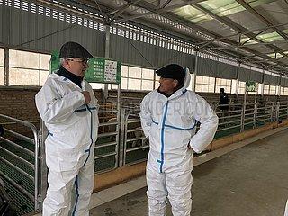 Xinhua Schlagzeilen: Ausländische Freunde reflektieren CPC Erfolg in den vergangenen Jahrhunderts Xinhua Schlagzeilen: Ausländische Freunde reflektieren CPC Erfolg in den vergangenen Jahrhunderts