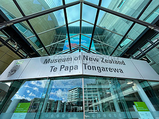 NEW ZEALAND-WELLINGTON-COVID-19-ALERT RAISED