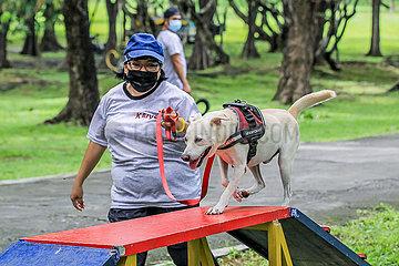 PHILIPPINEN-MANILA-Streunerhunde-TRAINING