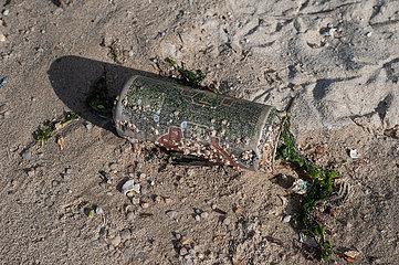 Singapur  Republik Singapur  Angespuelte leere Getraenkedose liegt am Strand des Changi Beach Parks im Sand