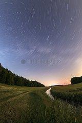 Nachts im Naturpark Barnim