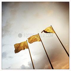 Golden Flags