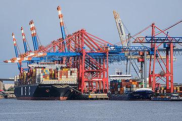 Containerschiffe im Hamburger Hafen  Hamburg  Deutschland  Europa