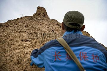 CHINA-NINGXIA-GREAT WALL-GUARDIAN (CN)