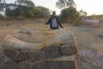 Sambia-Wild-Gras-Business
