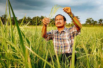 MASIPAG Farmerorganisation