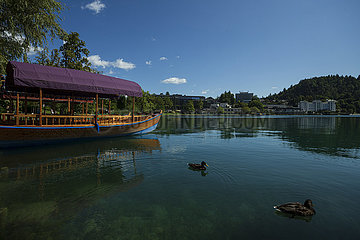 Slowenien-See Bled-View