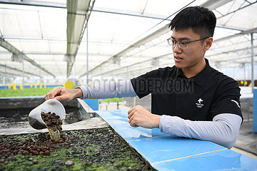 China-Guangdong-Kaiping-Aquaponics-Basis (CN)